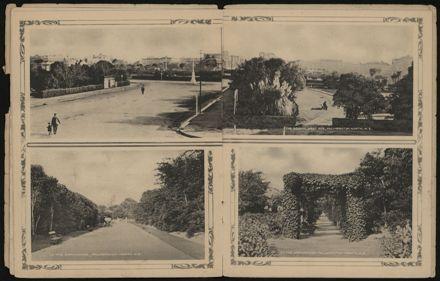 Souvenir of Palmerston North, N.Z. 6