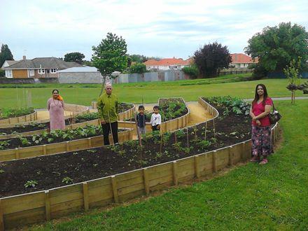 Community Garden, Norton Park 2