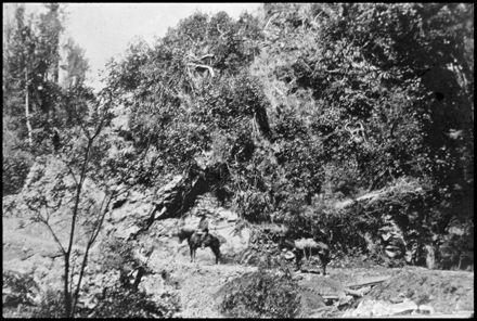 Access to Kahuterawa Valley