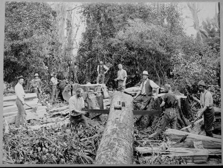 Sawing Timber for Railway Sleepers Along Opawe Road, Pohangina Valley