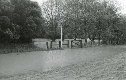Bledisloe Park under water
