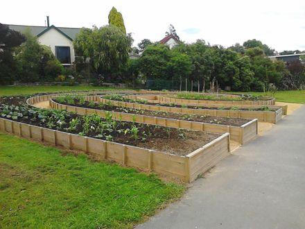 Community Garden, Norton Park
