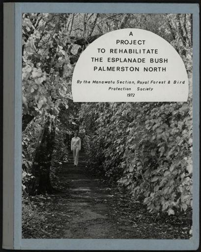 A Project to Rehabilitate the Esplanade Bush, Palmerston North 1