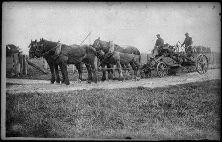 A Horse-drawn Road Grader