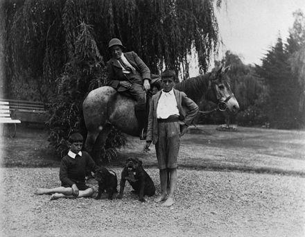 "Three sons of the Strang family at ""Woodhey"""