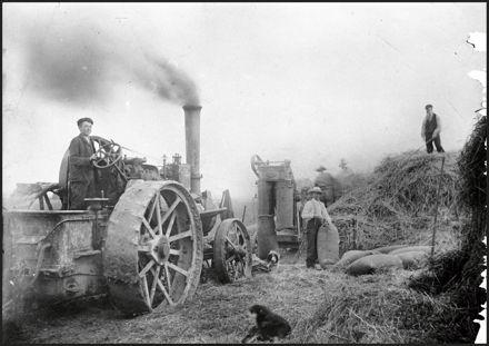 Chaff cutting on John Henson's farm, Mt Stewart