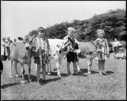 """Budding Young Farmers"" Whakarongo School Calf Day"