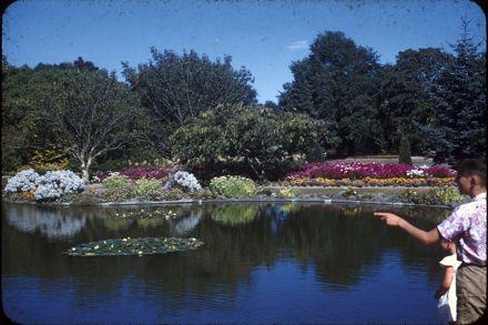 Fish Pond, Victoria Esplanade