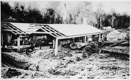 Henry Adsett's Sawmill, Taonui Road, near Feilding