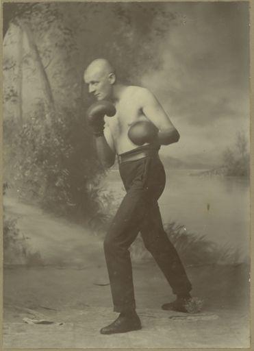 Unidentified Boxer