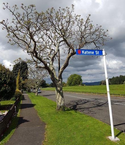 Katene Street sign with poppy