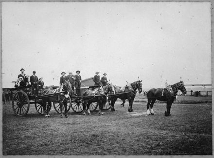 Gas Company drays at the Showground