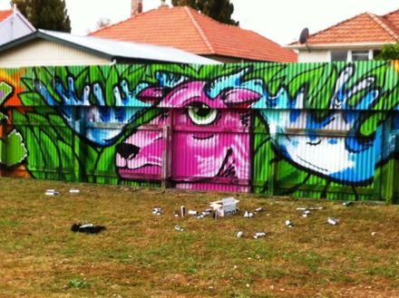 Graffiti at Norton Park