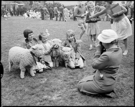 """""""Prizewinning Lambs at Tokomaru School"""""""