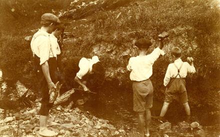 Boys hunting eels in stream, Fitzherbert West