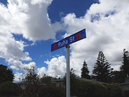 Ruha Street Sign with poppy