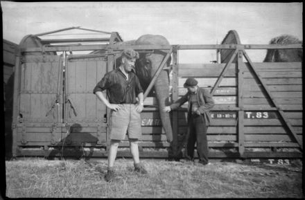 Unloading a Circus Elephant, Main Street Railway Station
