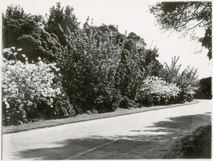 Scenes from Palmeston North, c1936 4