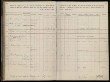 Palmerston North Rate Book, 1893 - 1896, 60