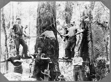 Bush Felling Team, Apiti District