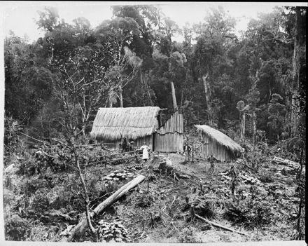 Bush-Feller's Hut