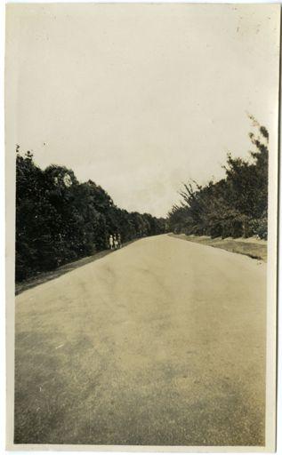 Andrews Collection:  The Drive, Victoria Esplanade