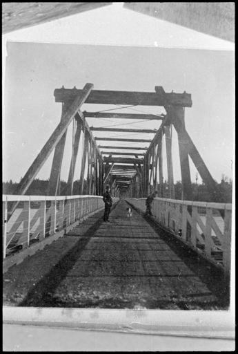 Ashhurst Bridge