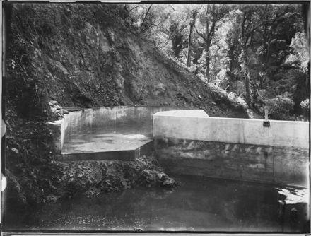 Second Dam at Turitea Stream, Upstream Side