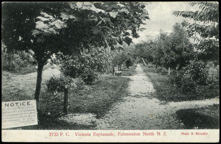 Path Through Victoria Esplanade Gardens 1