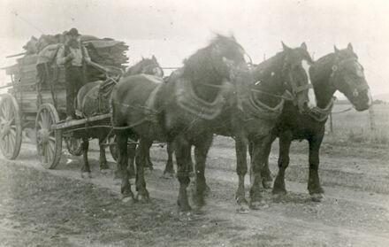 Christian Petersen Driving a Horsecart