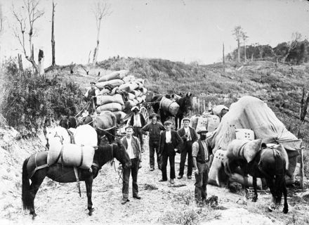 Transporting grass seed by pack-horse and wagon