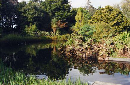 Duck Pond at Victoria Esplanade