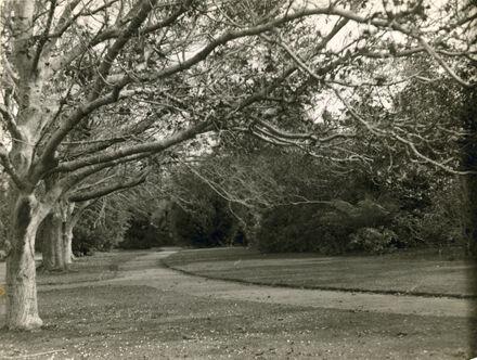Victoria Esplanade Gardens, Fitzherbert Avenue
