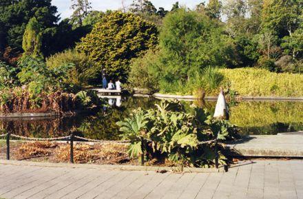 Victoria Esplanade Duck Pond