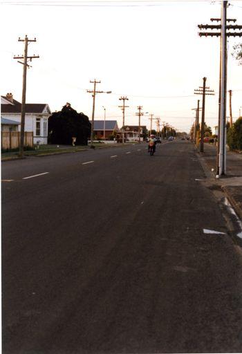 View of Botanical Road