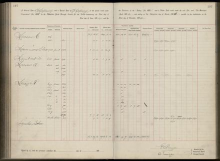 Palmerston North Rate Book, 1893 - 1896, 202