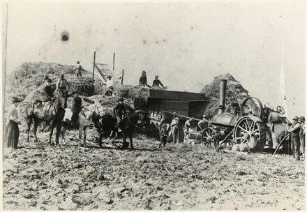 Making haystacks, Sanson
