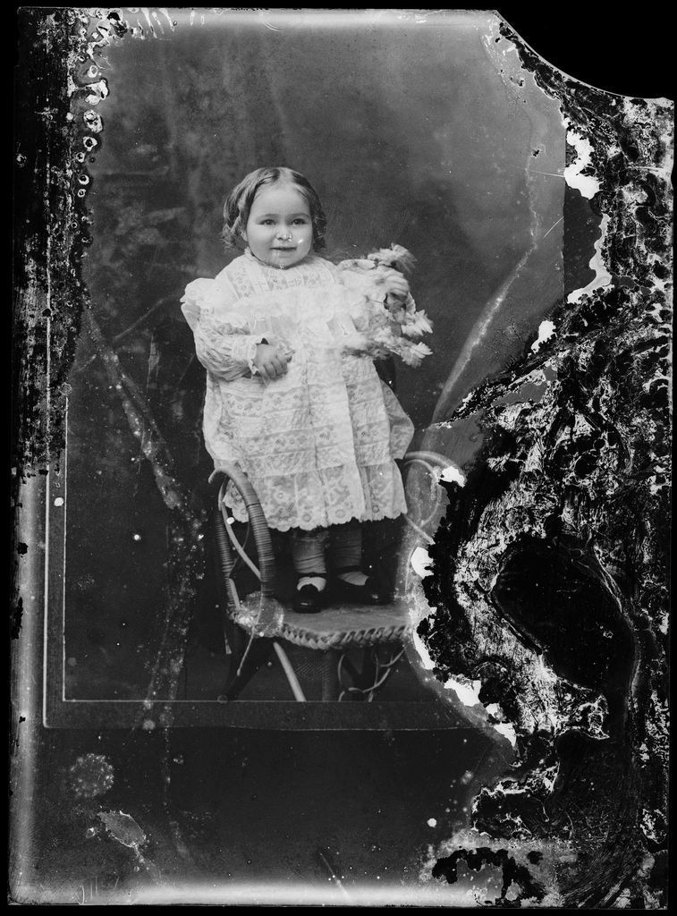 Young Collection - Glass Negatives
