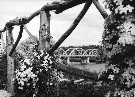 Fitzherbert Bridge shot from Victoria Esplanade