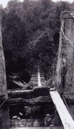 Burtton's swing bridge, Kahuterawa