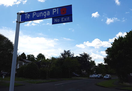 Te Punga Place street sign with poppy