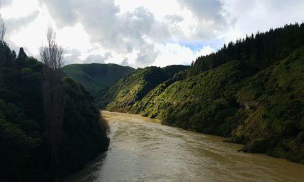 Manawatu River from the Upper Manawatu Gorge Bridge