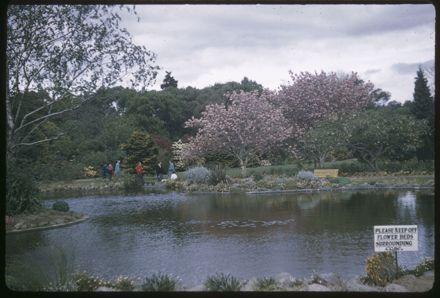 Victoria Esplanade Gardens - Duck Pond