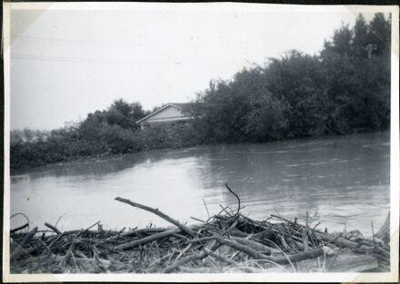 Trapped Debris, Rangiotu Flood