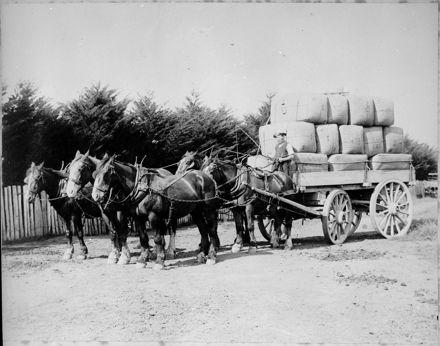 Wagonload of Wool Bales, Waituna West