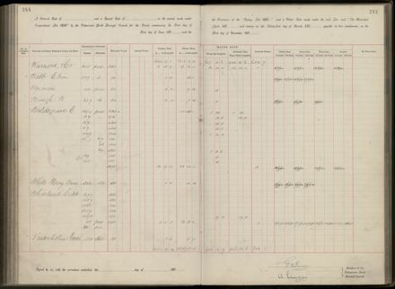 Palmerston North Rate Book, 1893 - 1896, 249
