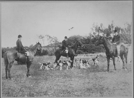 Hunting near Palmerston North