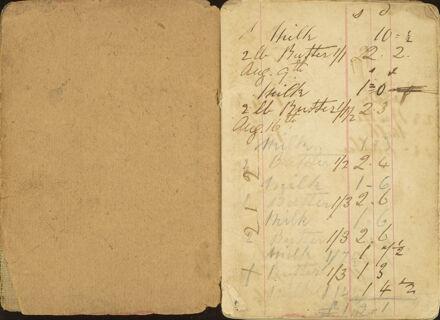 Shipboard diary p3