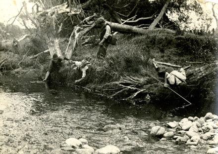 Hunting for eels, Fitzherbert West