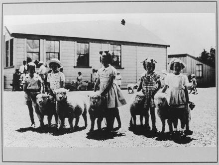 Aokautere School Lamb Day